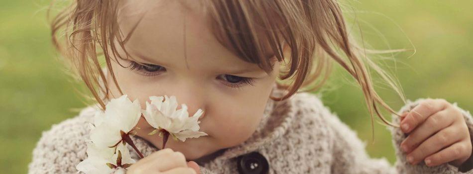 ottosublog-sensorymarketing-smelling