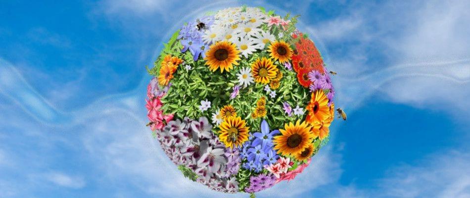 ottosublog-shopper-brain-conference-flower